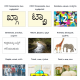 CourseLoka, Learn Kannada Class 1 with Tamil, Non-Tutor